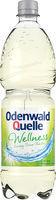 Odenwald-Quelle Wellness 12x1,0 ltr.